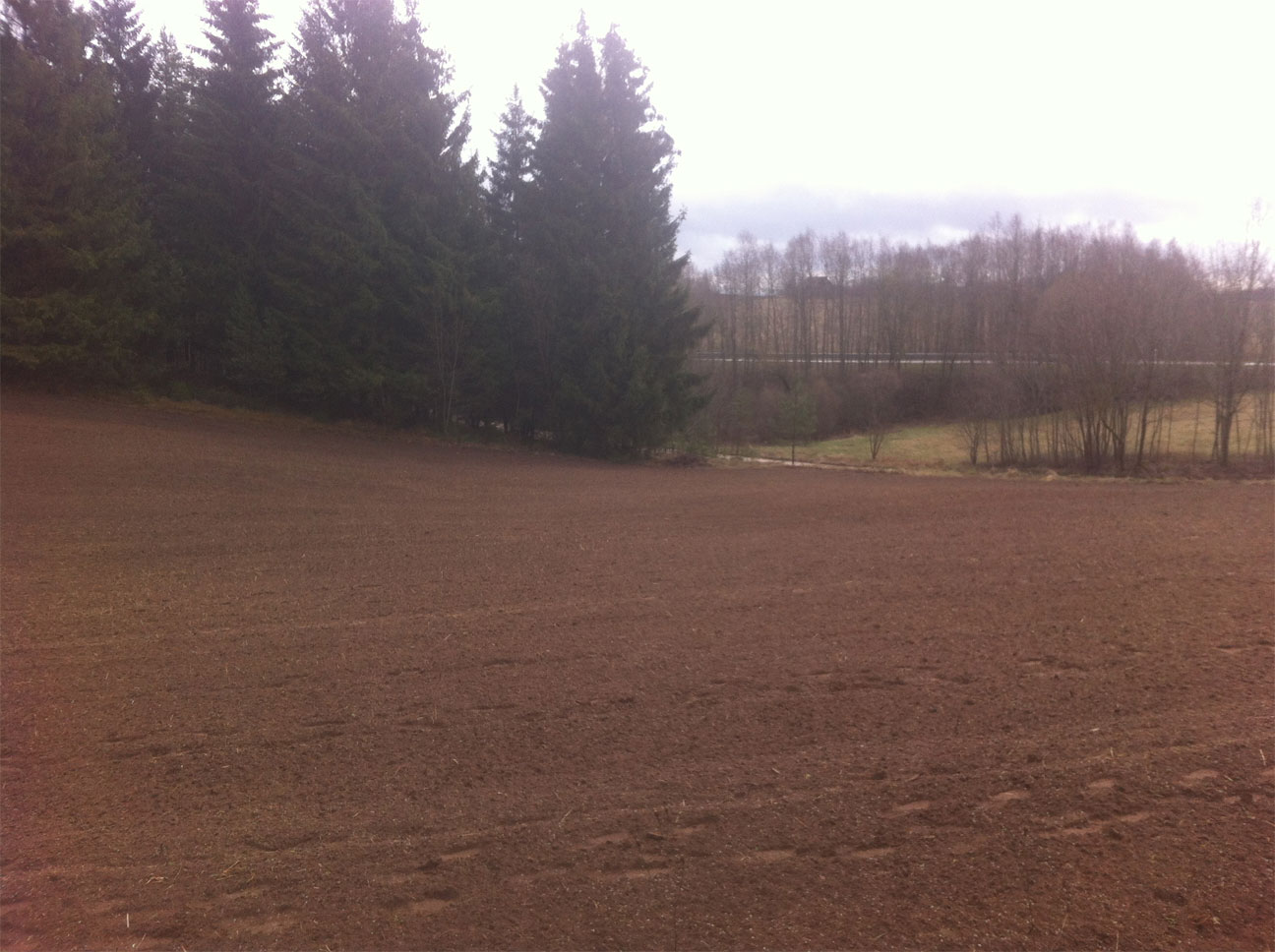 Field after (grass sown)